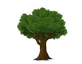 手繪綠色茂密的綠色大樹矢量圖