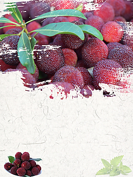 水果之美味楊梅背景