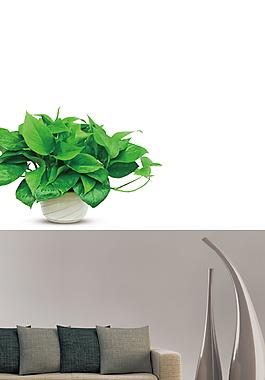 日系文藝范盆栽抱枕廣告背景素材