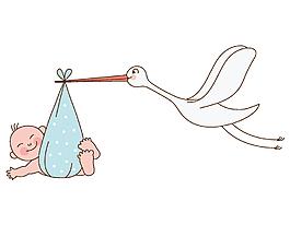 手繪卡通白鶴叼著嬰兒矢量元素