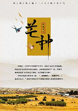 芒種-中國傳統節氣海報