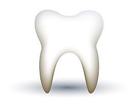 矢量白色牙齿元素
