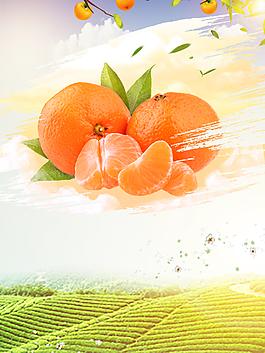 清甜柑橘背景素材