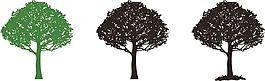 渐变色杨树矢量素材
