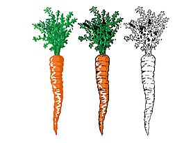 卡通手绘萝卜矢量元素