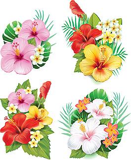 热带花卉系列矢量