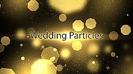 華麗的金色粒子光斑婚禮主題內容展示模板