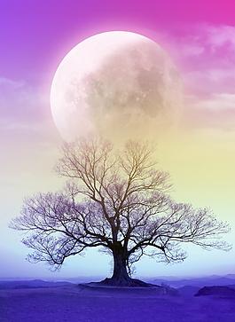 夢幻色彩大樹月圓海報背景素材