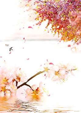粉色櫻花節浪漫海報背景