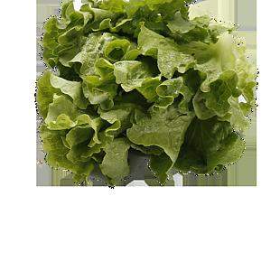 蔬菜免抠图高清