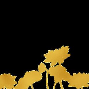 中國風傳統燙金鮮花花紋
