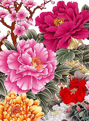牡丹花花卉窗簾