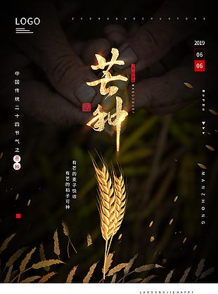 芒種金色麥穗海報圖片