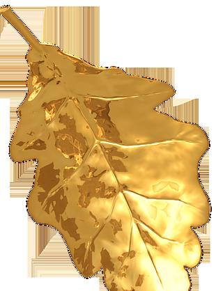 金色葉子免扣素材