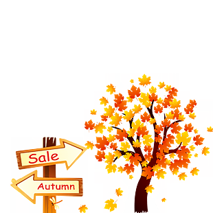 秋天满树泛黄的树叶