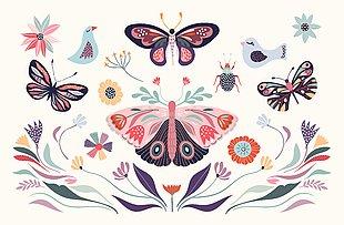 蝴蝶 手繪