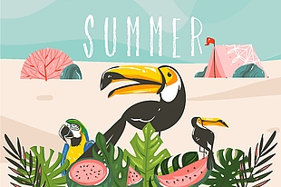 夏天 熱帶