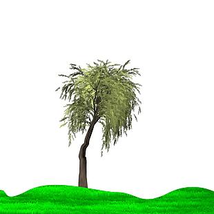 草坪+柳树