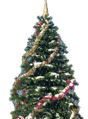 圣诞节装饰树