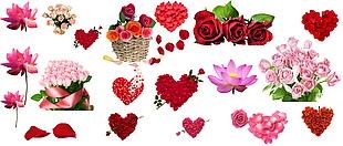 玫瑰花分层素材