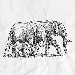 大象手绘矢量素材