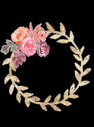 水彩的花朵 帧 水彩花 自然饰品