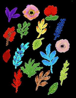 水彩的花 叶子 水彩花的 自然 春