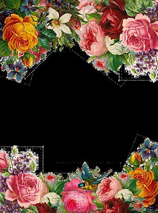 鲜花 花束 花的 安排 植物 花园