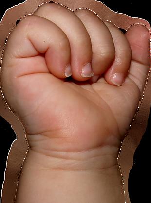 嬰兒的拳頭