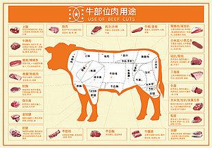 南美牛肉分割图