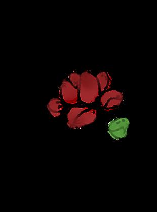 水墨蓮花單朵