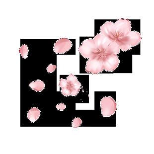 桃花粉色花朵手繪裝飾圖案