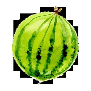 手繪 水果 卡通元素 西瓜
