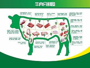 牛肉分割圖海報展板