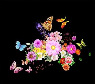 花朵 花 蝴蝶 花瓣