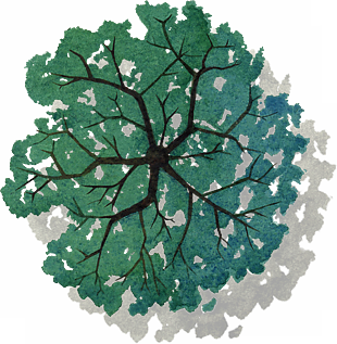手繪綠色植物