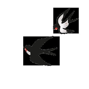 飛翔的燕子