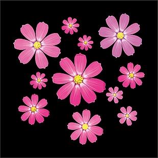 花+花朵+ 花瓣