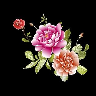 花 花素材 牡丹花