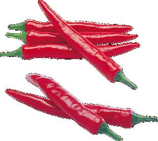 红辣椒png素材