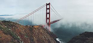 风景 大桥 起雾 自然