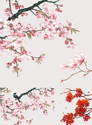 中國風手繪花鳥植物素材集合