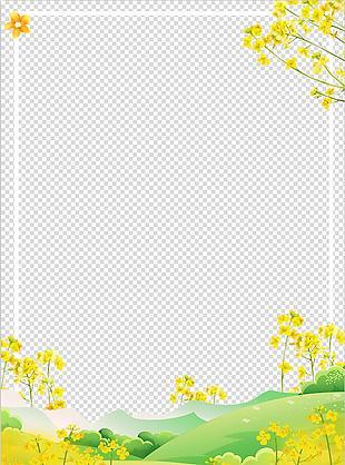 春天油菜花背景