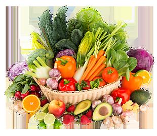 各種各樣水果實物