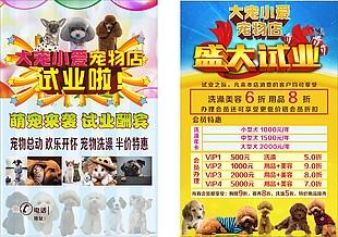 寵物宣傳單