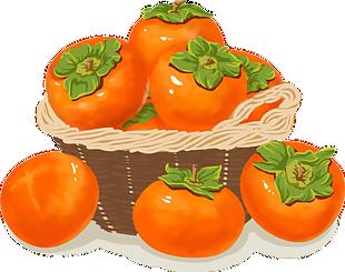 秋天柿子豐收