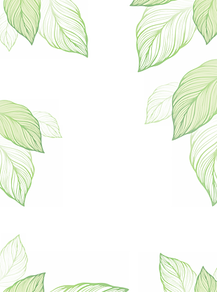 小清新葉子裝飾邊框